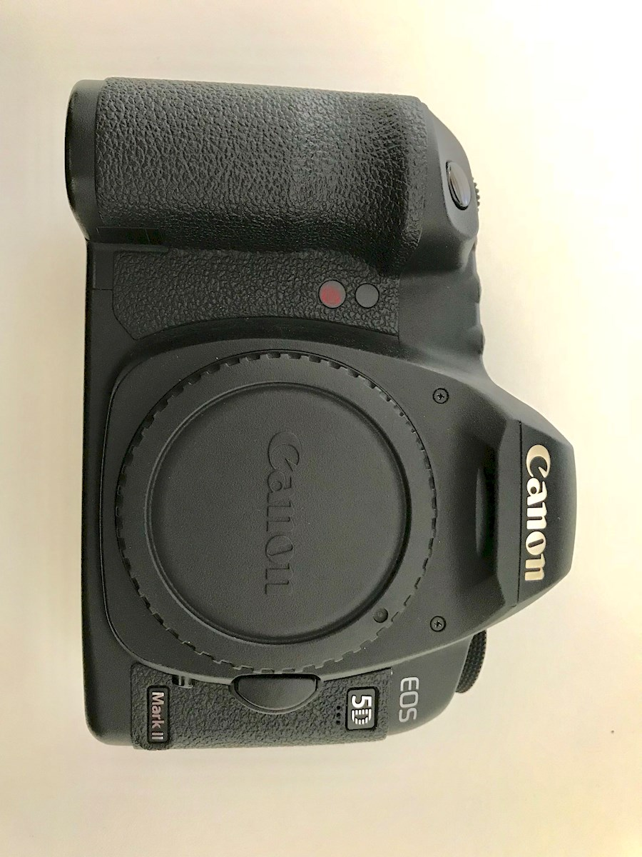 Rent a Canon 5D mark II body in Deventer from Marie