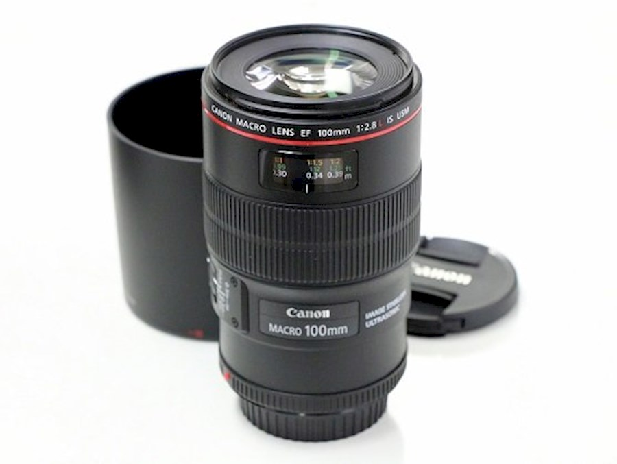 Rent a Canon 100 mm Macro F2.8 L in Hengevelde from Rene