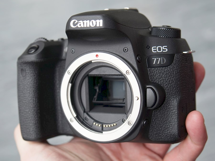 Rent a Canon 77D in Herent from Kristof