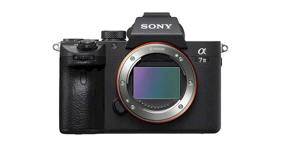 Rent Sony A7III from P D LAMMERS