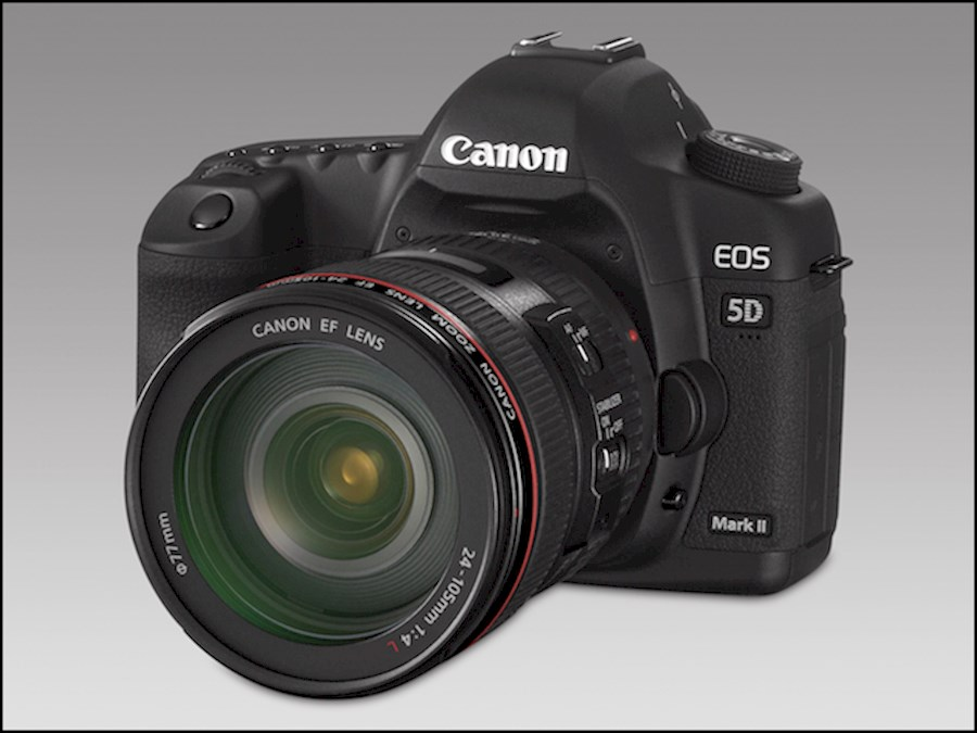Rent a Canon 5d Mark II in Amsterdam from Andrea