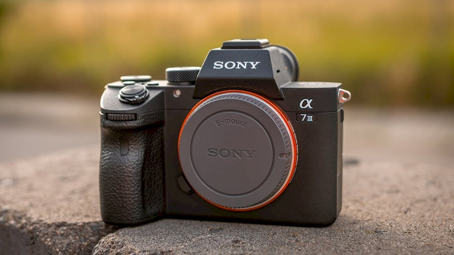Rent Sony A7III body from Sido