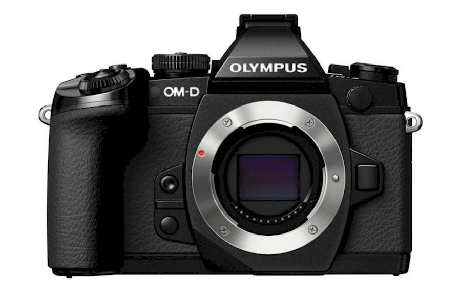 Rent a Olympus OMD EM1 Mark II in Amsterdam from Ruben