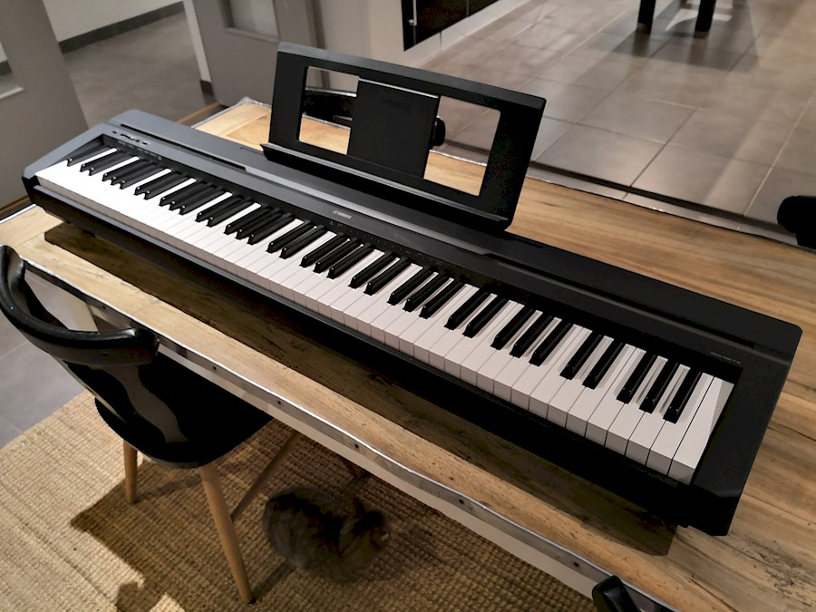 Rent Yamaha P-45 B from Sjardi Djoy
