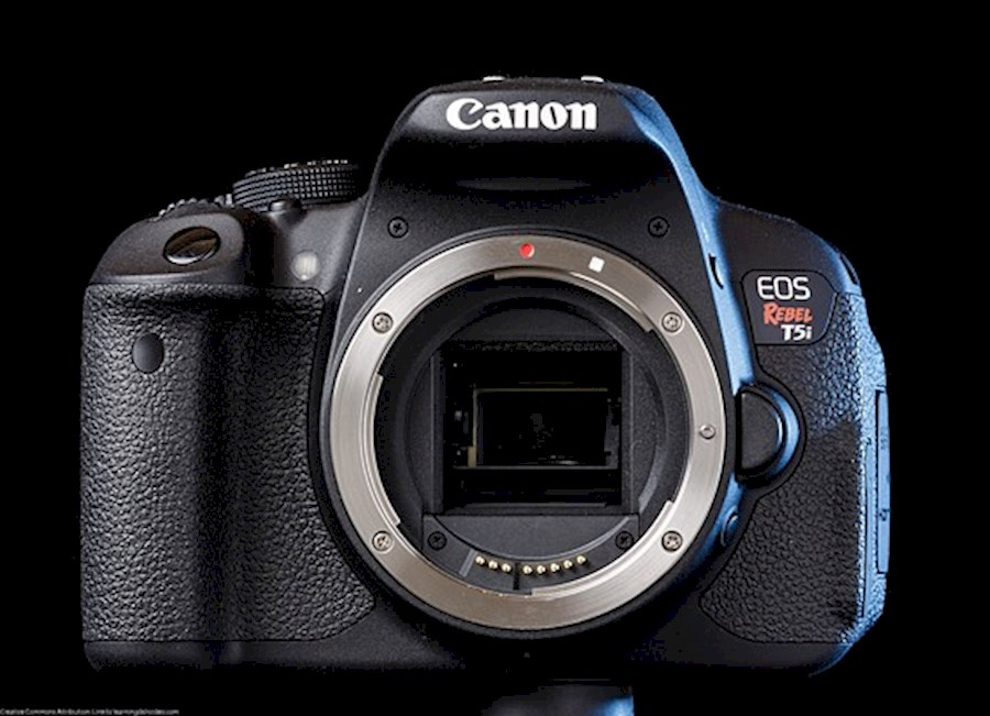 Rent a Canon 5D MK IV in Gent from Sander