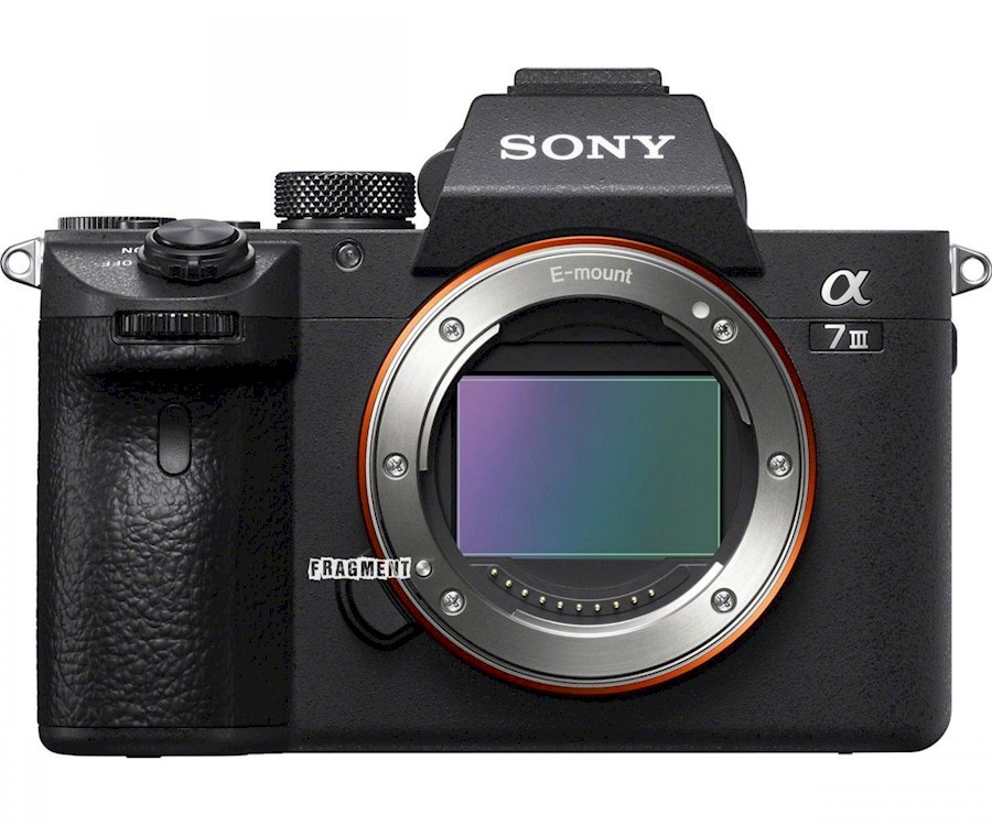 Rent Sony A7III Body from CORNFLIKS
